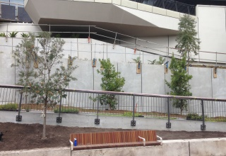 Darling Harbour Live Project Reinforced Earth® retaining wall